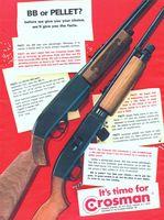 Crosman BB and Pellet Guns 1972 Ad Picture