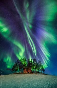 Aurora: Taken by Rune H. Selnes on April 2, 2016 @ Harstad, Norway   I   Been visiting this spot for years waiting for an aurora angel. Being patient pays off, this night she displayed her self in all here glory !!