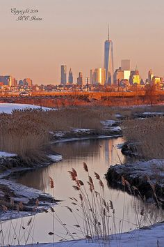 Freedom Tower & NYC Skyline Winterscape Sunset from Marshes near Richard DeKorte Park (Meadowlands),