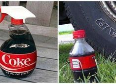 15 Practical Uses for Coca Cola – Proof That Coke Does Not Belong In the Human Body ! The most popular drink in the world, Coca-Cola, acts as an acidic clea. Get Rid Of Flies, American Drinks, Most Popular Drinks, Coke Cans, Home Treatment, Spray Bottle, Human Body, Household Cleaning Tips, Silk Ribbon Embroidery