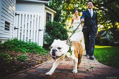 20 Photos Of Pets At Weddings That Are Almost Too Cute For Words