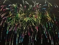 Fireworks linocut   Marta Banaszak printmaking Fireworks, Printmaking, Plants, Printing, Plant, Prints, Planets