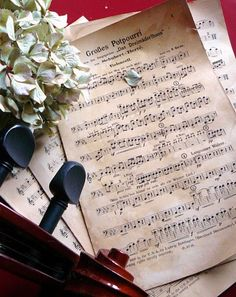 ♫♪♫ flower and notes