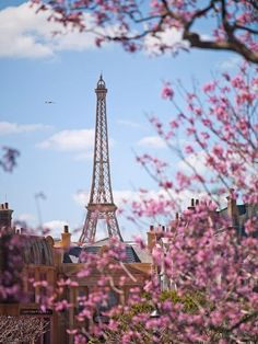 Someday, when I'm rich, I'm going to take my Mom to Paris...it's always been her dream to go here.  #DesBookMomGiveaway
