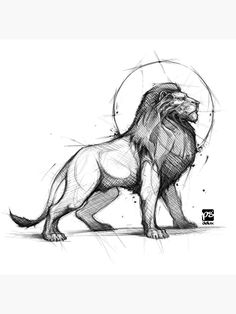Cool Sketches, Art Drawings Sketches, Cute Drawings, Sketch Drawing, Black And White Art Drawing, Black And White Illustration, Animal Sketches, Animal Drawings, Drawing Animals