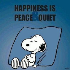 Snoopy Happiness is peace and quiet. There is nothing I like better than peace and quiet when I really need it. Peanuts Cartoon, Peanuts Snoopy, Peanuts Comics, Snoopy Love, Snoopy And Woodstock, Snoopy Pictures, Images Of Snoopy, Snoopy Quotes, Peanuts Quotes