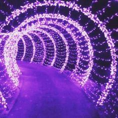 Image result for purple tumblr grunge