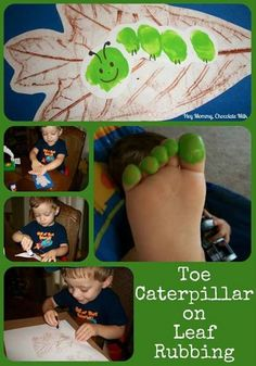 toe caterpillar on leaf rubbing � good fall activi