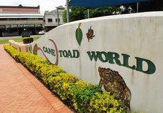 Cane Toad World, Cairns, Australia – New Tourist Attraction