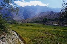 Pisco Tasting in Chile : Chile's Elqui Valley, where most Chilean Pisco is distilled.