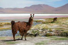 4 Lugares para visitar en #Bolivia que te dejarán con la boca abierta https://mindfultravelbysara.com/lugares-para-visitar-en-bolivia/