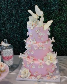 Close up of this beautiful butterfly themed cake! Butterfly Birthday Party, Pretty Birthday Cakes, Butterfly Baby Shower, Birthday Ideas, Baby Girl Shower Themes, Girl Baby Shower Decorations, Baby Shower Cakes, Girl Shower Cake, Butterfly Party Decorations