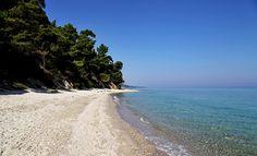 Kriopigi beach, Kassandra. Most Beautiful Beaches, Greece, Water, Travel, Outdoor, Greece Country, Gripe Water, Outdoors, Viajes