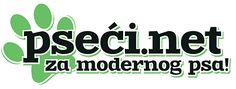 Američki koker španiel - roditelji šampioni - http://pseci.net/oglas/americki-koker-spaniel-roditelji-sampioni