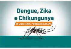 Entenda a diferença entre zika dengue e chikungunya