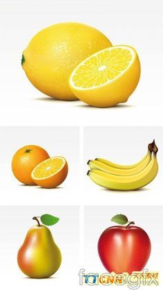 This is one of the most realistic based vector illustrations I've seen going through here. Each of the fruit's textures were very well portrayed. Even the juicyness of the fruit can almost be determined by each illustration.