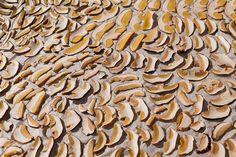 Как сушить грибы правильно? Как сохранить необычный вкус и аромат грибов Stuffed Mushrooms, Vegetables, Food, Stuff Mushrooms, Essen, Vegetable Recipes, Meals, Yemek, Veggies