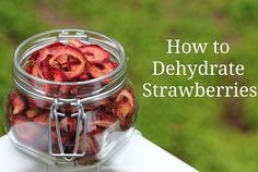 How to Dehydrate Strawberries    Not only are they great to snack on, but dehydrated strawberries are a nice addition to oatmeal, granola and dried cereal.  You can even toss them into a basic scone mix to liven them up.