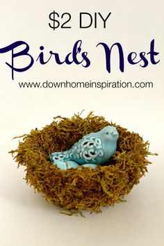 "A quick, fun and ""cheap"" DIY bird's nest that will cost you $2 to make."