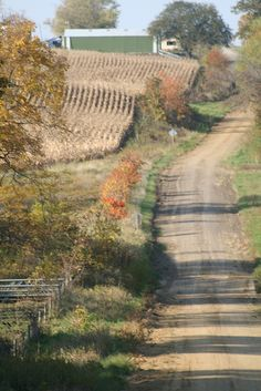 This is the landscape I remember when visiting my grandparents farm in South Dakota just over the river from Iowa.