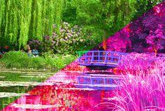 Aprenda a aplicar o efeito Infrared nas suas fotos usando o Photoshop