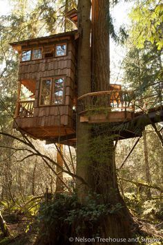 Pete Nelson treehouse //www.nelsontreehouseandsupply.com/lake ... on adult tree house designs, awesome tree house designs, luxury offices designs, luxury camping canvas tent, luxury home designs, luxury walk-in shower designs, luxury bathrooms designs, luxury apartments designs, 2 story tree house designs, custom tree house designs, single tree house designs, deck designs, luxury kitchens designs, luxury swimming pools designs, diy tree house designs, contemporary tree house designs, luxury house plans designs, two tree house designs, ultimate tree house designs, luxury furniture designs,