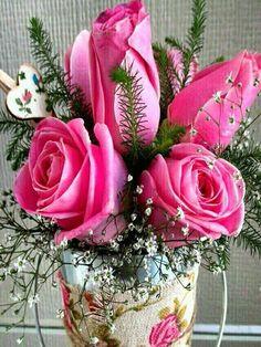 Image beautiful roses in Rakesh Kumar Sharma's images album Beautiful Flowers Wallpapers, Beautiful Flowers Garden, Exotic Flowers, Amazing Flowers, Love Flowers, Beautiful Roses, Good Morning Images Flowers, Good Morning Roses, Flower Images