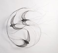 Bird Sculptures Constructed from Wire by Celia Smith