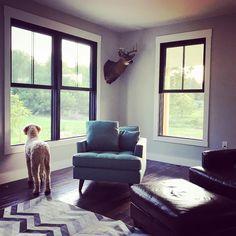 It's a windows wide open kind of evening  . . . . . #nolaacres #blackwindows #plygem #grey #greywalls #magnoliahome #chevron #rug #hide #modernfarmhouse #modernfarmhousestyle #farmhouse #farmhousedecor #countrydecor #countryliving #saturdaynight #goldendoodle #dogs #dogstagram #dogsofinstagram #dog #summer #summernight #summernights #buck #deer #mount