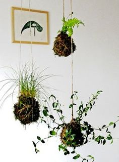 An easy DIY guide to making beautiful string gardens.
