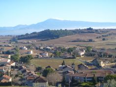 The view across the outskirts of Chateauneuf du Pape towards Mont Ventoux.
