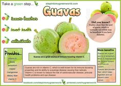 guavaS Guava Plant, Whole Food Recipes, Healthy Recipes, Yummy Recipes, Healthy Food, Healthy Eating, Pink Foods, Registered Dietitian, Cooking Ingredients
