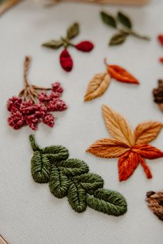 Embroidery Thread, Embroidery Patterns, Rose Bouquet, Star Patterns, Beautiful Patterns, Autumn Leaves, Cherry, Pdf, Stitch
