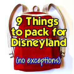 9 Things to Pack in your Backpack for Disneyland - No Exceptions