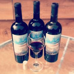Why don't they sell Train's wines in Canada?!?! ='(