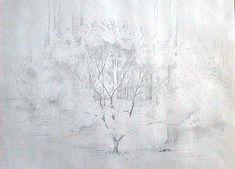 Howard Taylor | Untitled (Foliage) | Annandale Galleries Sydney