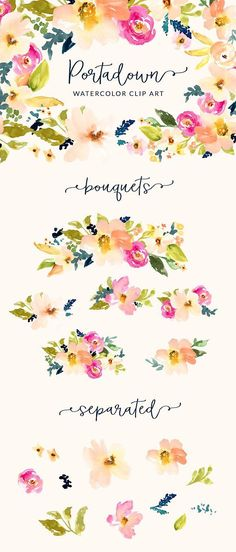 Portadown Watercolor Flower Clip Art by Angie Makes on @creativemarket