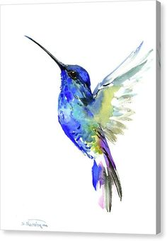 Flowers Drawings Inspiration : Blue Hummingbird painting 14 x color flowers hummingbird wall art Hummingbird Tattoo Watercolor, Hummingbird Painting, Humming Bird Watercolor, Hummingbird Sketch, Hummingbird Illustration, Illustration Art, Hummingbird Colors, Flor Tattoo, Bluebird Tattoo
