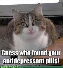 Guess who gots ur antidepressant pills!