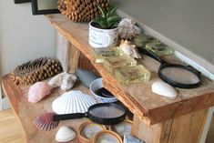 Nature Table from the Casa Class at Helensville Montessori New Zealand