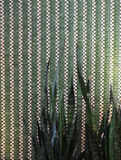 Emerald mix glass and stone mosaic tile outdoors. #MosaicMonday #TileSensations