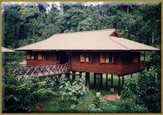 Borneo Rainforest Lodge, Sabah (Borneo) Malaysia #travel #Borneo #Malaysia #rainforest