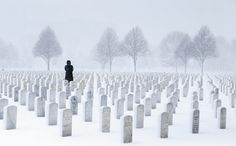 A haunting photo of a solitary woman visiting Fort Snelling National Cemetery during a spring snowstorm struck a chord with readers and has been shared thousands of times on social media.