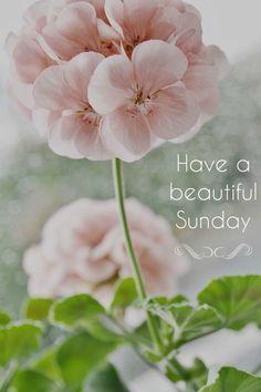 have a beautiful Sunday!