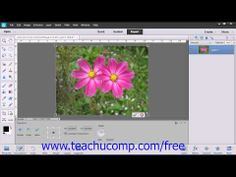 Learn how to use the free transform command in Adobe Photoshop Elements at www.teachUcomp.com. A clip from Mastering Photoshop Elements Made Easy v. 12. http://www.teachucomp.com/free - the most comprehensive Photoshop Elements tutorial available. Visit us today!