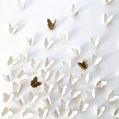 Extra large wall art 3D Butterfly Set of 55 Original white porcelain + gold ceramic butterflies sculpture with metal wire (52 white 3 gold)