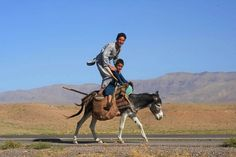 Sept. 7, 2012. Afghan youths pose as they ride a donkey on the outskirts of Herat, Afghanistan.