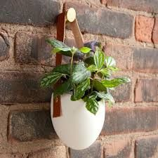 Bildergebnis für light + ladder hanging wall planters
