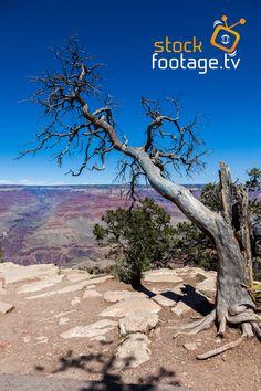 Have a look @ our beautiful #stockvideos #grandcanyon #southrim #naturalwonder #nature #canyon #unitedstatesofamerica