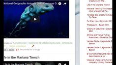 """16/02/17 10:25hs  Boletín """"La Caracola""""  D.I.M. - Diario de Información del Mar  Aprocean Blog  http://aprocean.blogspot.com.es"""